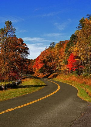 Blue Ridge Parkway Scenic Driving Tour