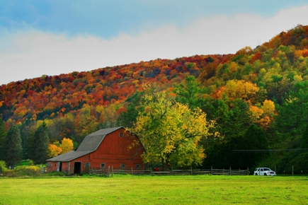 Eldred Pennsylvania Fall Travel And Tourism
