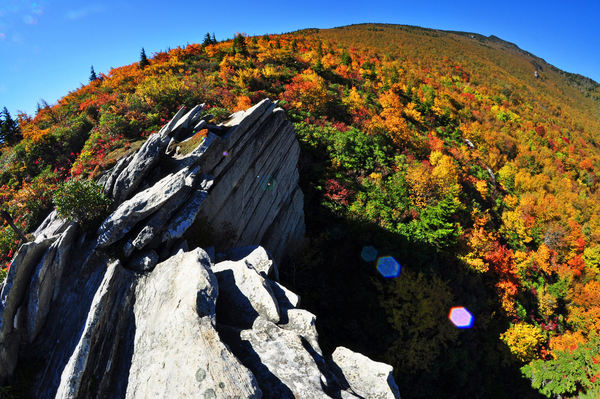 tips for planning an asheville nc fall foliage trip