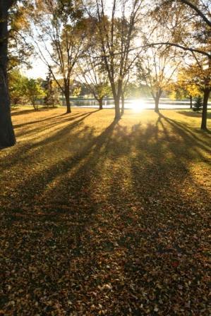 Wisconsin Fall Foliage Trip