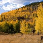 How To Plan A Foliage Trip to Breckenridge, Colorado