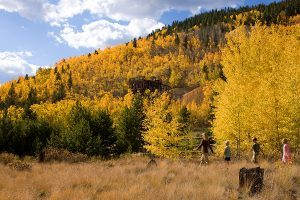 How To Plan A Foliage Trip to Breckenridge, Colorado