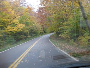 highway-in-autumn-leaves