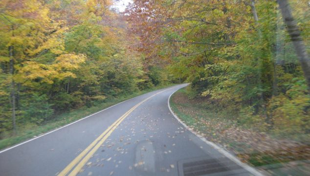 Beautiful Weekend for an Autumn Leaves Roadtrip